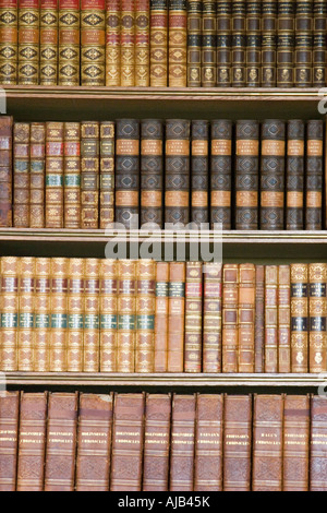 Old leather bound volumes of books in library bookcases - Stock Photo