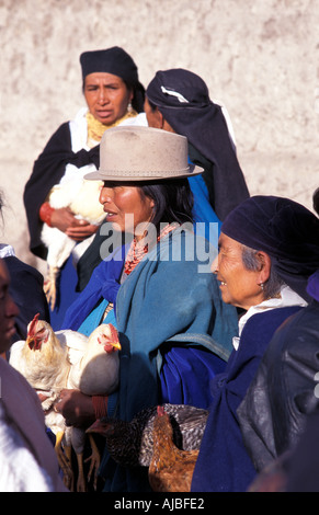 Poultry vendors Otavalo is one of Ecuador s most popular tourist destinations not least for its market - Stock Photo
