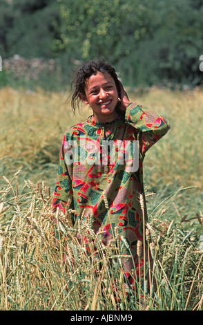 Young Pakistani woman in her fields of barley Sust near the Chinese border Northern Pakistan - Stock Photo