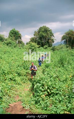 Tourists Trekking Through Lush Mountain Landscape - Stock Photo