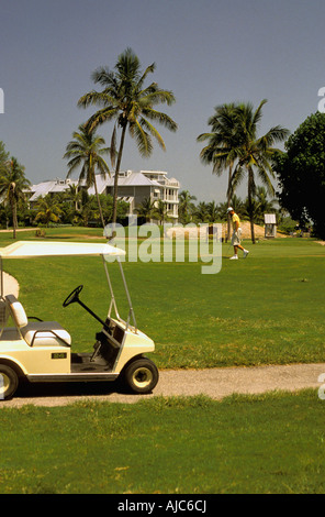 Captiva Island golf  cart at golf course, plam trees, south seas plantation, florida, fl ,fla, sport outdoor recreation - Stock Photo