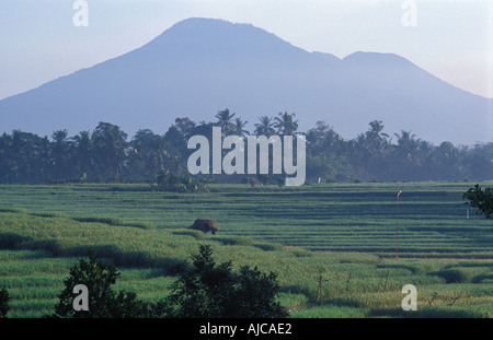 Gunung Batukau viewed from the southwestern coast Inland of Yeh Gangga Bali Indonesia - Stock Photo