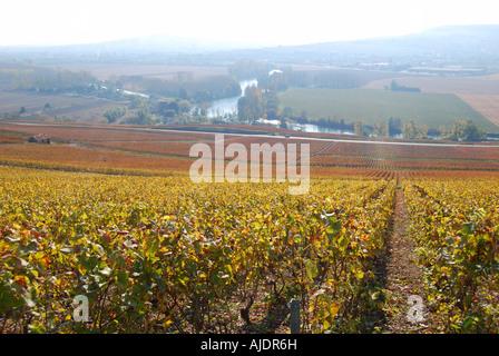 Moet et Chandon winery, Vallee de la Marne, Marne, Champagne-Ardenne, France - Stock Photo