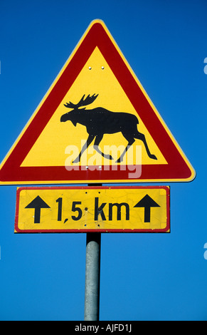 Moose on a road sign - Stock Photo