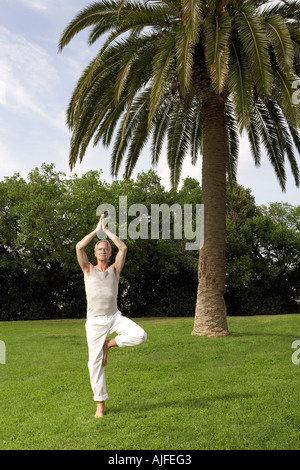 Middle-aged man doing tai chi in park - Stock Photo