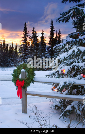 Holiday Wreath hanging on split rail fence next to decorated tree w sunset Anchorage Alaska Winter - Stock Photo
