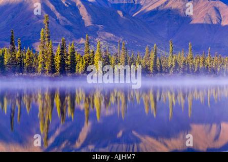 Forest reflects in Drashner Lake w mist along shoreline AK Range in background Southcentral Alaska Autumn - Stock Photo