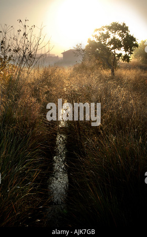 Irrigation channel in spanish village Valencia Spain - Stock Photo