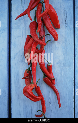 Red peppers drying - Stock Photo