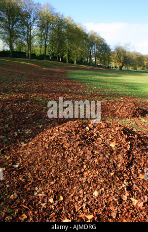 pile of autumn leaves in Lurgan Park, County Armagh, Northern Ireland - Stock Photo