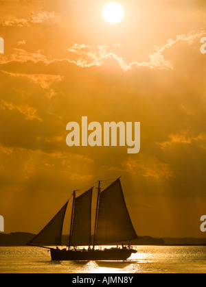 American schooner sailing ship with tourists returning to its harbor at sunset. - Stock Photo