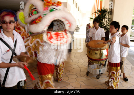 Chinese Malaysians perform the Southern Lion Dance on Chinese new year. Batu Ferringhi, Penang Island, Malaysia. - Stock Photo