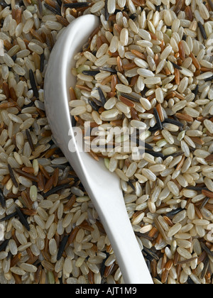 Mixed wholegrain rice - high end Hasselblad 61mb digital image - Stock Photo