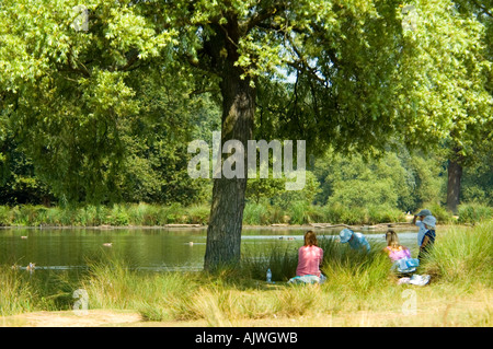 Horizontal view of a young family having a picnic underneath a large oak tree in the sunshine. - Stock Photo