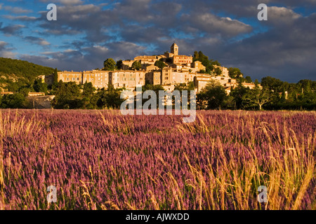 France Provence Hilltop village of Banon Viewed over Lavender field - Stock Photo