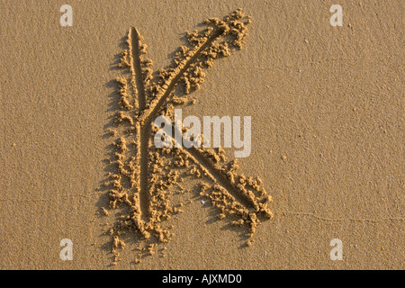 Alphabet hand writen letters on the sand - Stock Photo