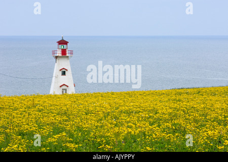 Lighthouse at Cape Tryon, French River, PE/PEI Prince Edward Island, Canada - Stock Photo