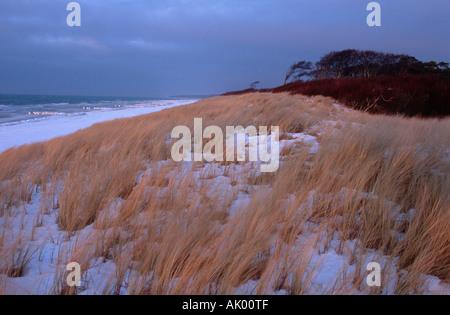 Beach in winter / Darss - Stock Photo