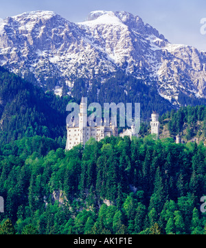 Neuschwanstein Castle Bavaria Germany - Stock Photo