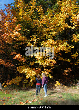 A mother and daughter enjoy the autumn color change of Bigtooth Maple trees in the Cascade Mountains - Stock Photo