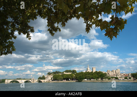 View from across the River Rhone of the Pont d'Avignon (Pont St Benezet) and the city skyline, Avignon, Provence, - Stock Photo