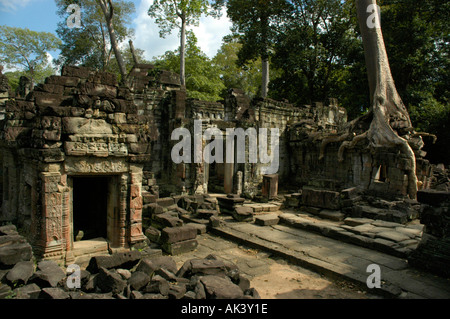 Decayed temple Preah Khan covered with old trees Angkor Siem Reap Cambodia - Stock Photo