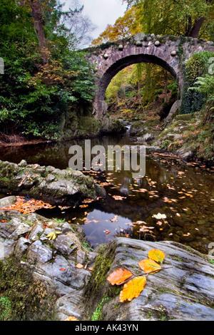 Foley's Bridge, Tollymore
