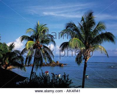 Seychelles Mahe Island - Stock Photo