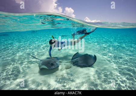 A teenage girl snorkels with Southern stingrays (Dasyatis americana) at a location known as the Sandbar, Grand Cayman - Stock Photo