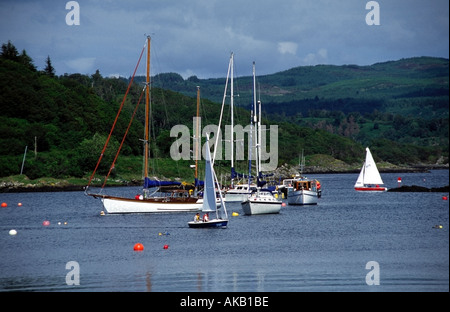dinghy sailing in tayvallich harbour knapdale argyll scotland europe - Stock Photo