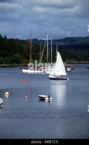 laser 16 dinghy sailing in tayvallich harbour knapdale argyll scotland europe - Stock Photo