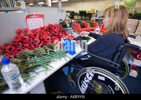 Disabled poppy maker making poppies from her wheelchair at the British Legion Poppy factory at Richmond Surrey - Stock Photo