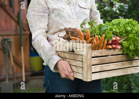 Man carrying crate of vegetables, mid section - Stock Photo