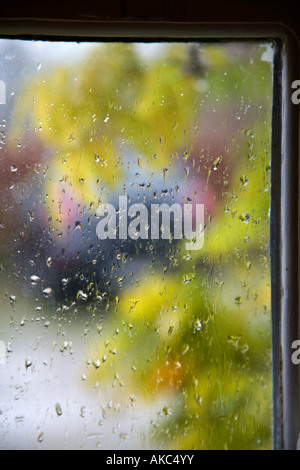 Mist and raindrops on glass pane after a night of rain ...