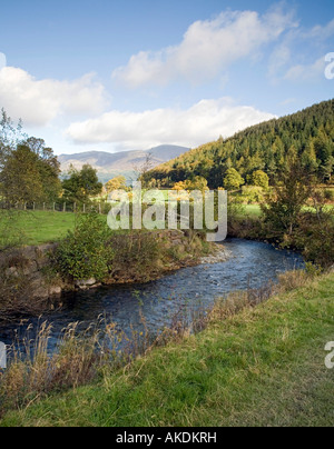 Newlands Beck Valley looking north from near Uzzicar farm Skiddaw in the distance Lake District Cumbria - Stock Photo