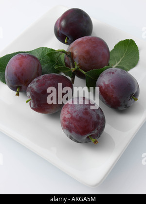 English plums summer fruit editorial food - Stock Photo