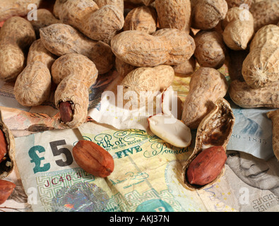 Are you working for peanuts That s what some companies offer Perhaps its time for another job or to go it alone - Stock Photo