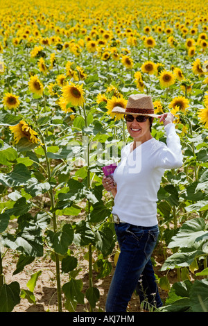 Woman in a field of sunflowers - Stock Photo