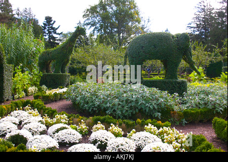 Green Animals Topiary Garden Portsmouth Rhode Island Stock Photo Royalty Free Image 15002235
