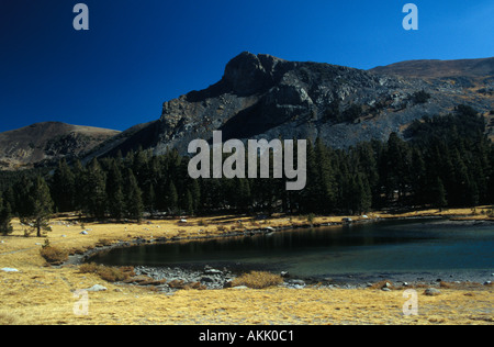 Lake Tioga Pass Road Yosemite NP California - Stock Photo