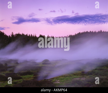 Steam Spouting from Geothermal Vents in Craters of the Moon Scenic Area North Island New Zealand - Stock Photo