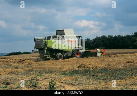 SHROPSHIRE England UK Combine harvester cutting barley and leaving a line of cut straw in its wake - Stock Photo