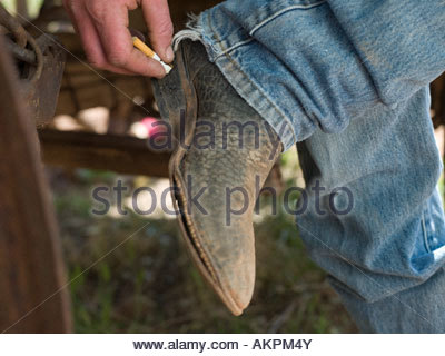 Man stubbing out cigarette - Stock Photo