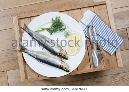 Meal of fish on a tray - Stock Photo