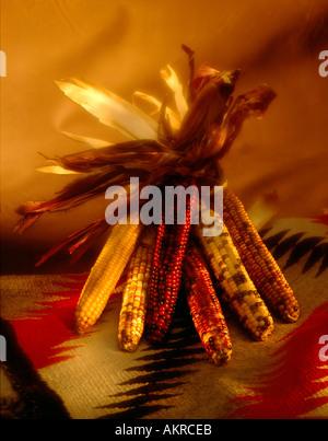 Indian corn on indian blanket still life - Stock Photo