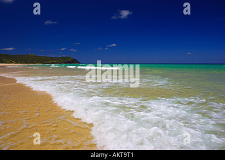 Noosa beach Australia - Stock Photo