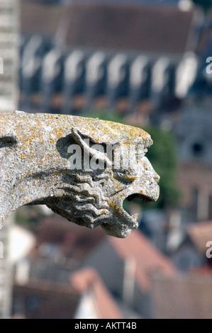 Chartres France Exterior 'Notre Dame Cathedral' Overview of City Center from Top of Cathedral Gargoyle - Stock Photo