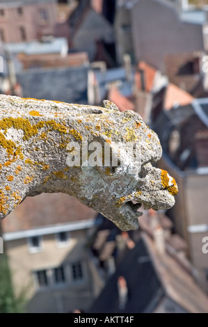 Chartres France Exterior 'Notre Dame Cathedrale' Overview of City Center from Top of Cathedral Gargoyle - Stock Photo