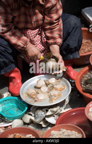 Shelling Fish at Jagalchi Fish Market Busan South Korea - Stock Photo