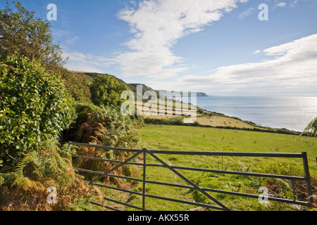 the South West Coast Path near East Prawle in south Devon England UK - Stock Photo